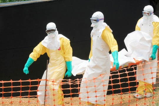 West Africa's Ebola Death Toll Rises to 337