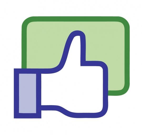 Facebook Cracks Down On Fake 'Likes' in Poll Season