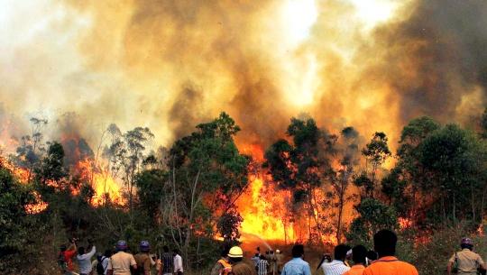 IAF Joins Operation to Douse Tirumala Fire