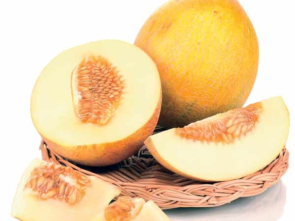 Health Benefits Of Cantaloupe Muskmelon Healthy Living Knowing 12 typical benefits of cantaloupe fruit for skin & health and consider taking advantages of cantaloupe for the whole health. health benefits of cantaloupe