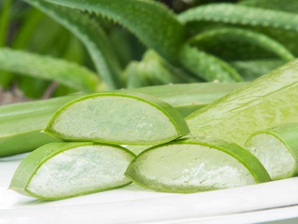 Beauty Benefits Of Aloe Vera