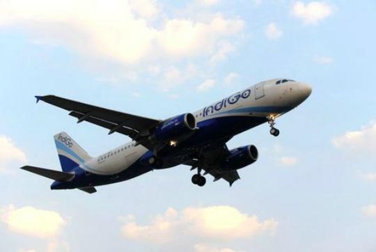 Midair Scare As Bird Hits Indigo Flight