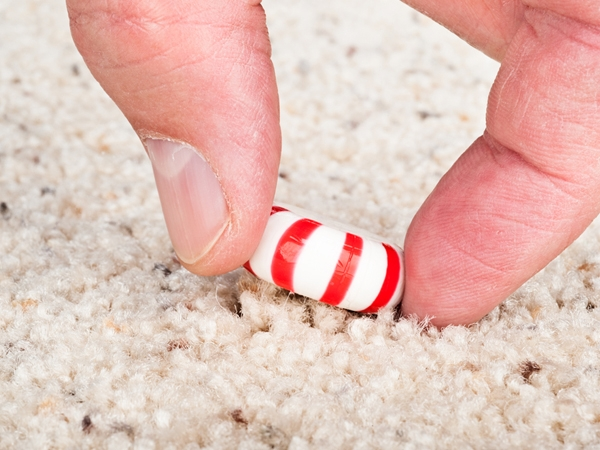 The Truth About The Five Second Rule