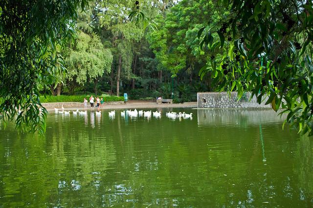 Delhi lodi garden
