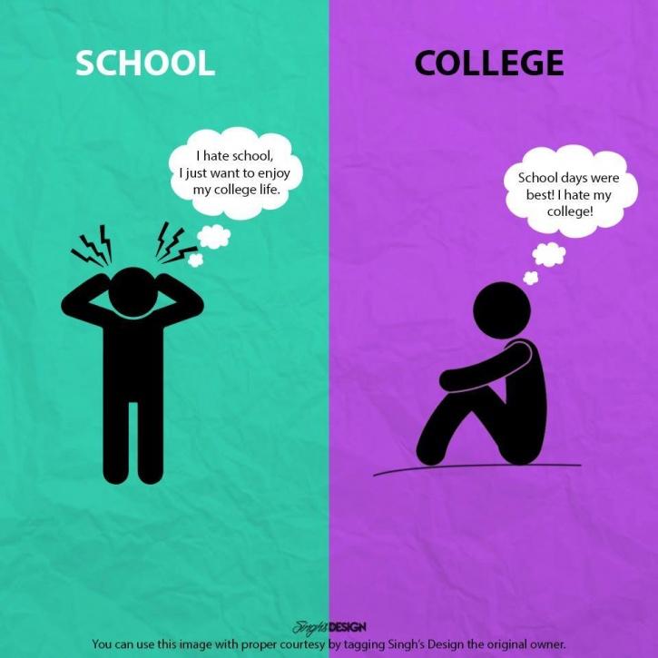 School, College