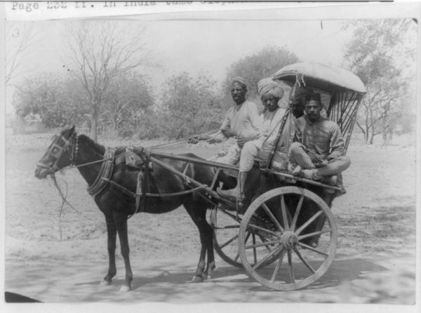 horse cart driver