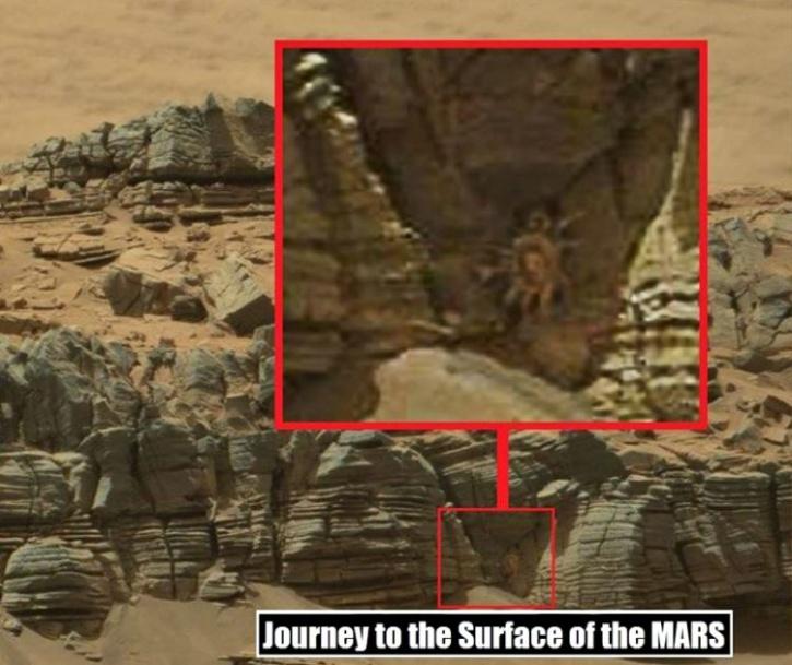 Crab like creature on Mars