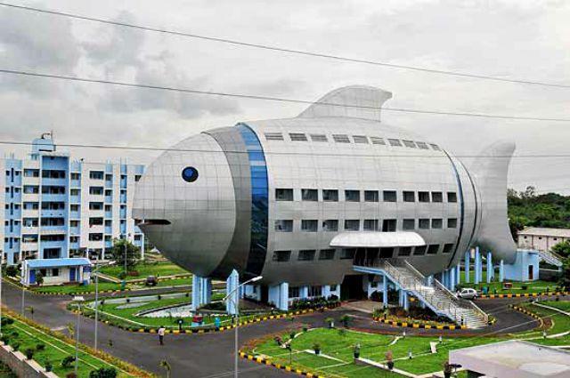 National Fisheries Development Board, Hyderabad