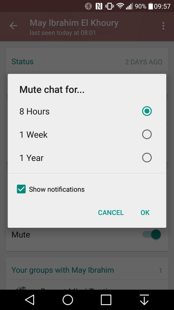 WhatsApp mute chat