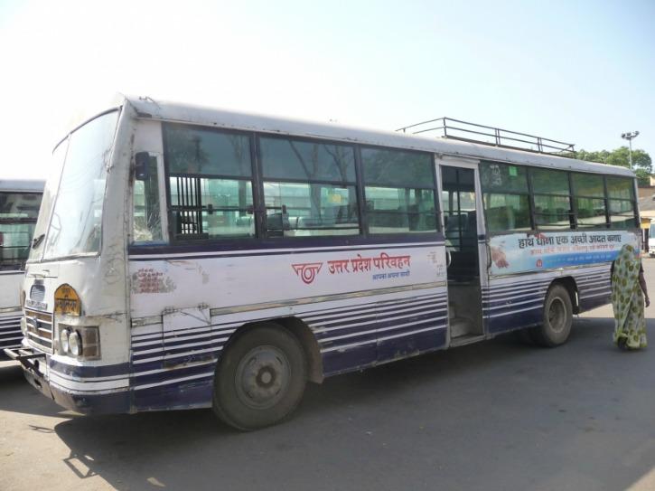 Monkey Takes UPSRTC Bus For A Drive