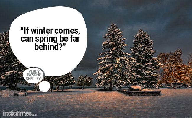 Winter quote 8