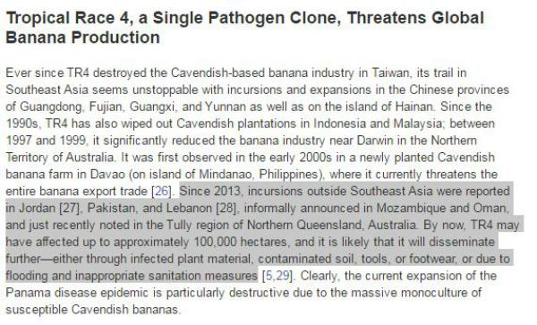 banana pathogen virus