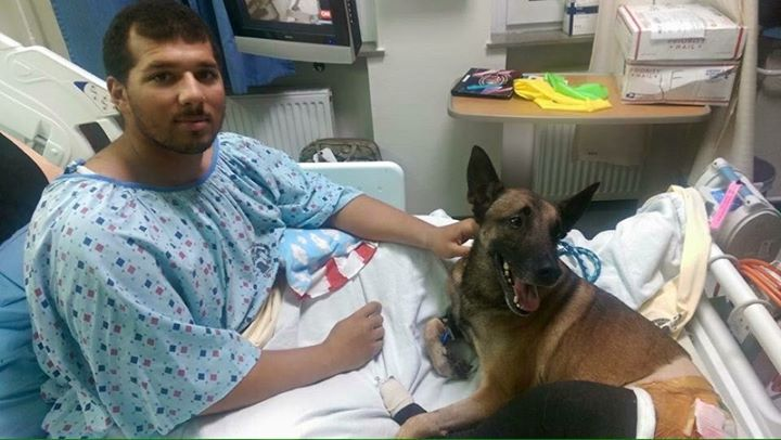 Soldier and army dog get treated in the same hospital