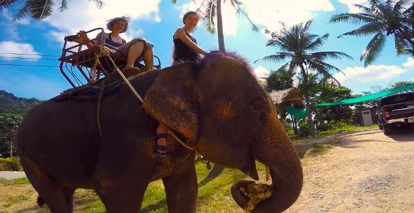 Elephant ride at Thailand