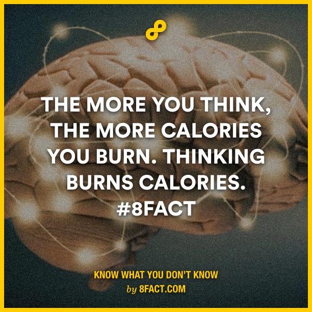 Thinking fact