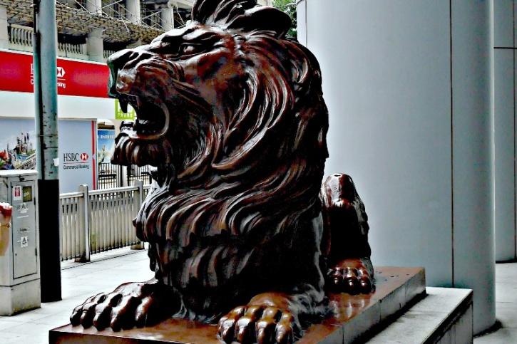 hk lion