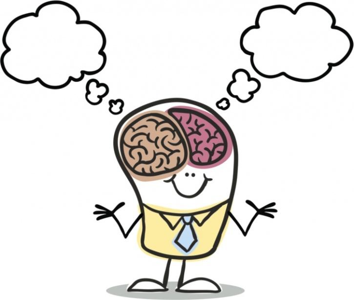 Left brain vs right brain.