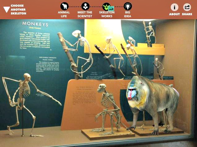 Smithsonian iOS App