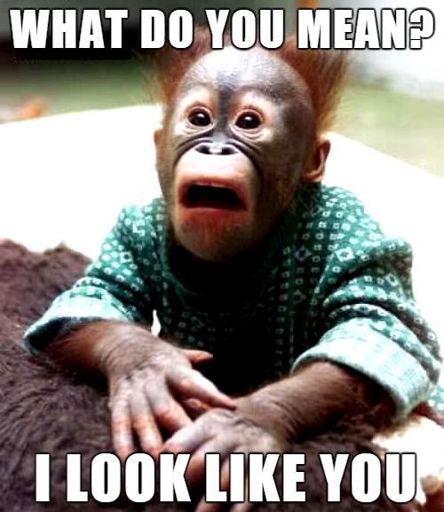 Just monkeying around.