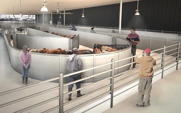 Gralla Equine Architects