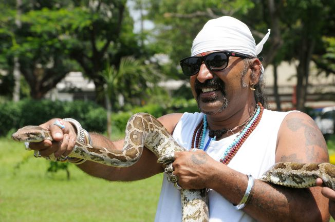 Picture of Snake Shyam flaunting his reptile-catching abilities