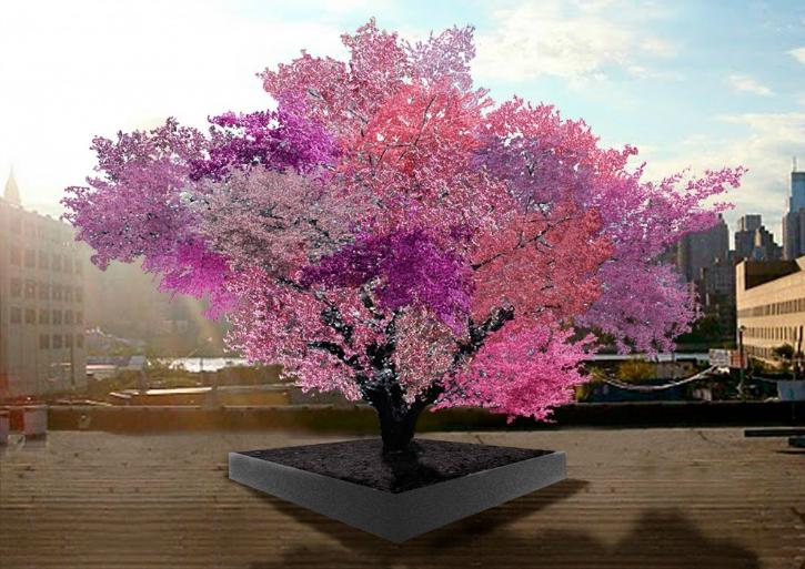 Sam van akens tree of 40