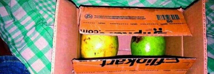 mangoes flipkart delivery
