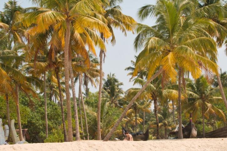 Kalavoor Beach