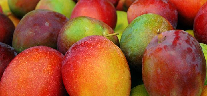 Manjhi and kumar fighting over mangoes