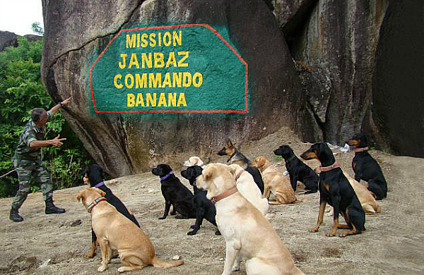 army dog india