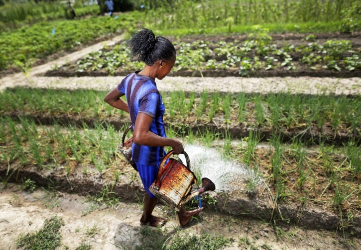 Working women Bangui