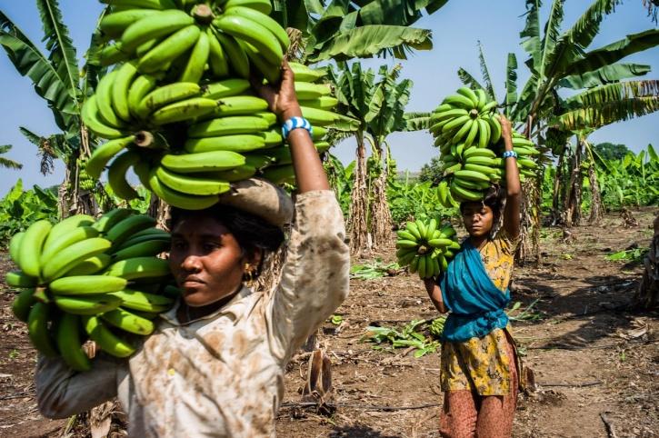 working women Madhya Pradesh
