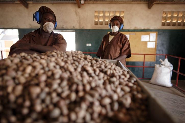 working women Burkina Faso