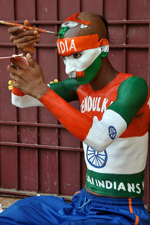 cricket fan