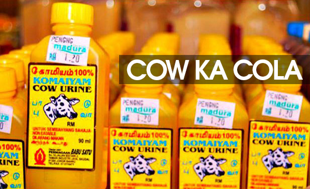 cow ka cola