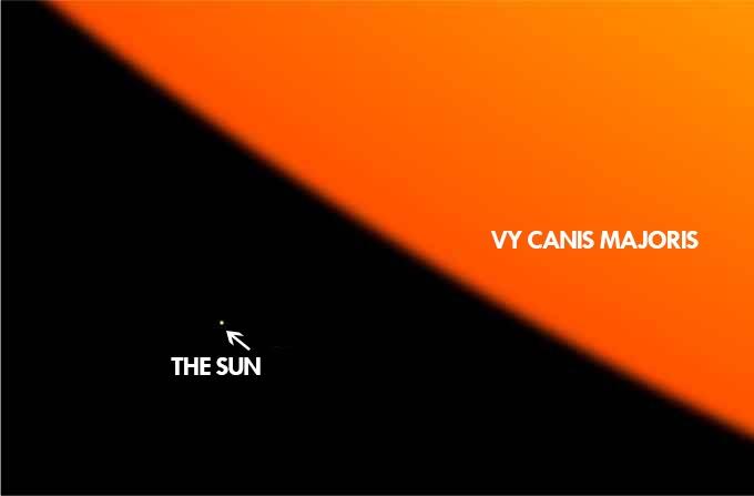 sun vs star