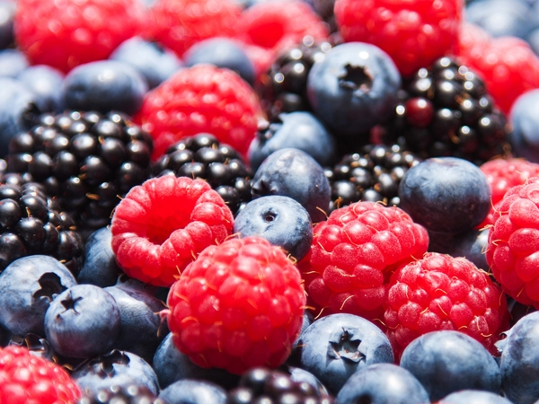 10 Brain Foods You Need To Know About