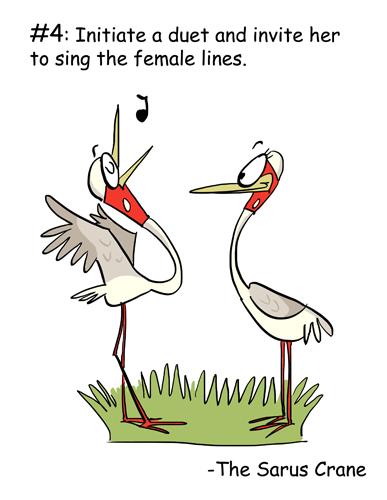 The Sarus Crane