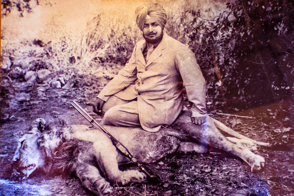 lion hunting india