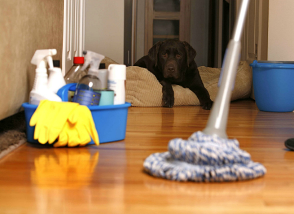 cleaning chores