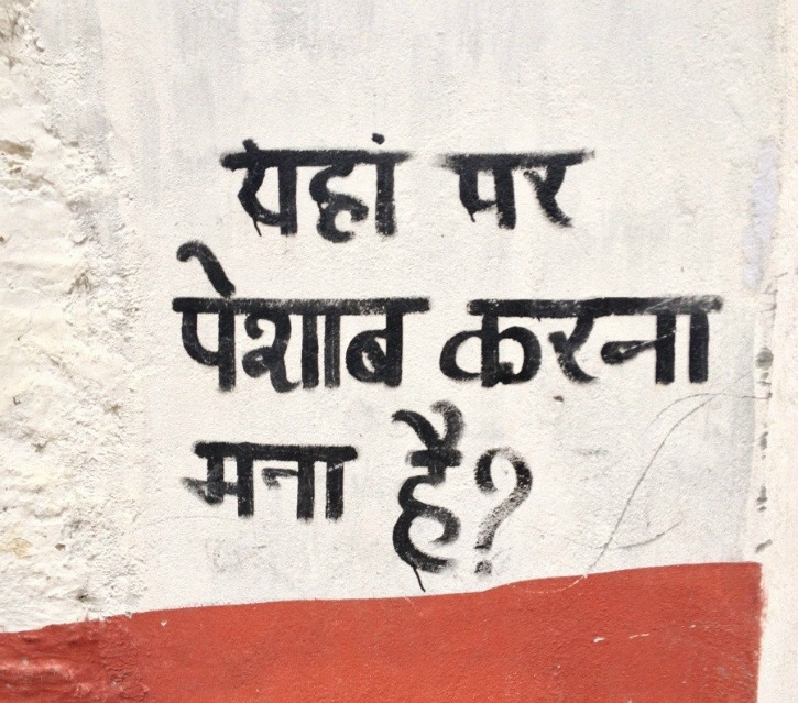 No Government Job For You In Haryana