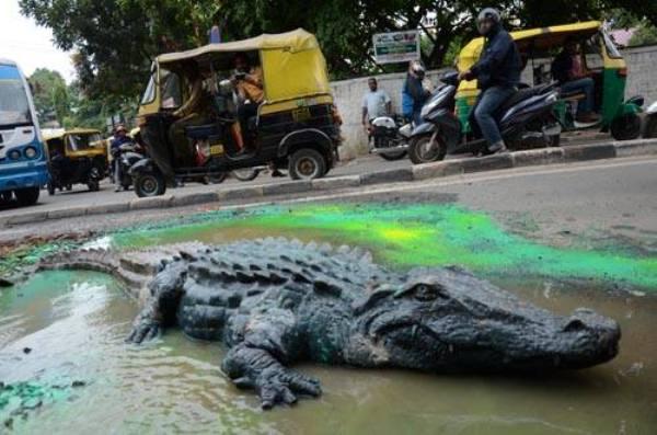 Deadly Potholes