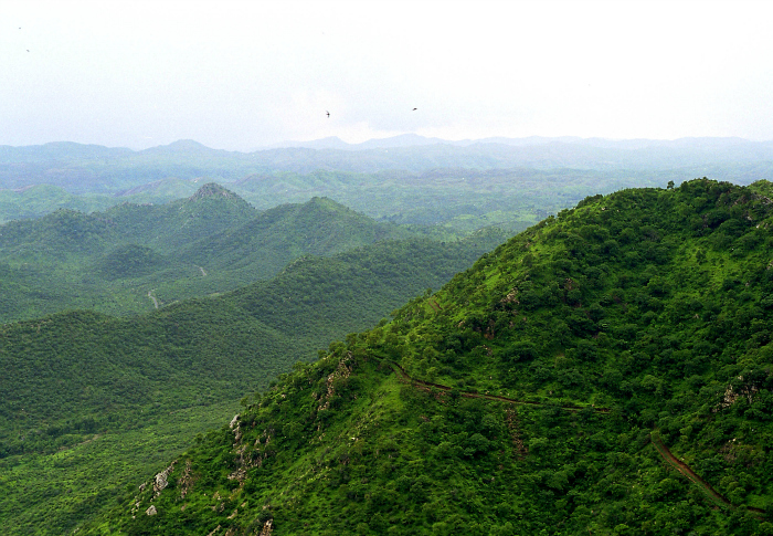 Nearly 100 Acres Of Aravalis Will Soon Be Converted Into A Garbage Dump By Haryana Government