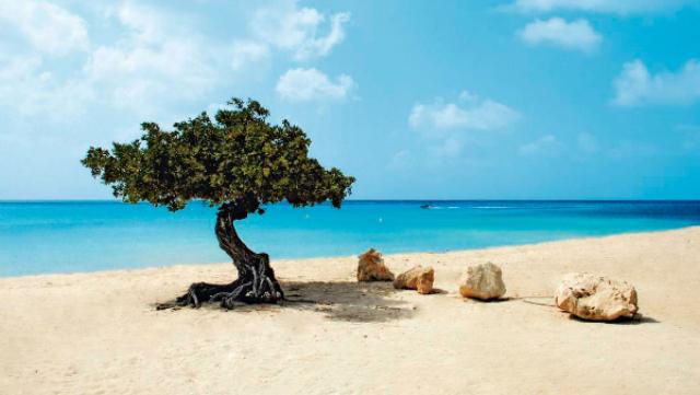 Aruba Island