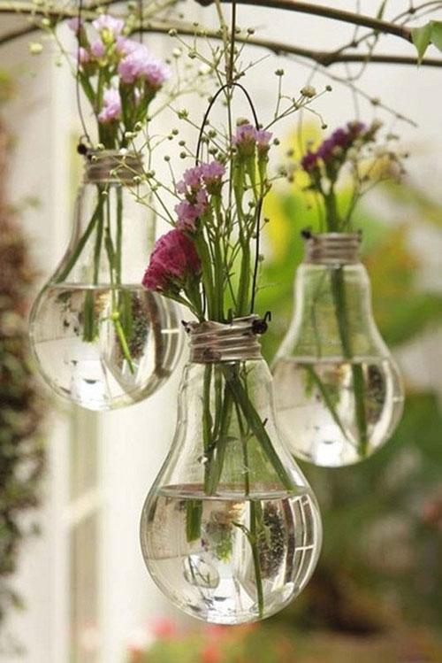 bulb plant holder