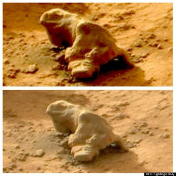 Iguana on Mars