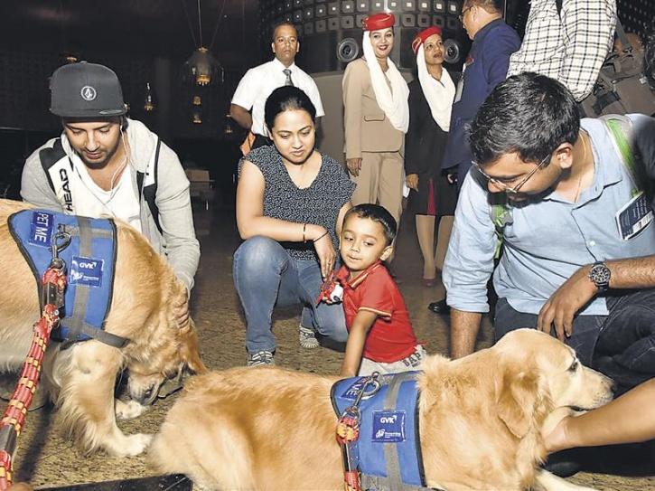 therapy dogs mumbai airport 3