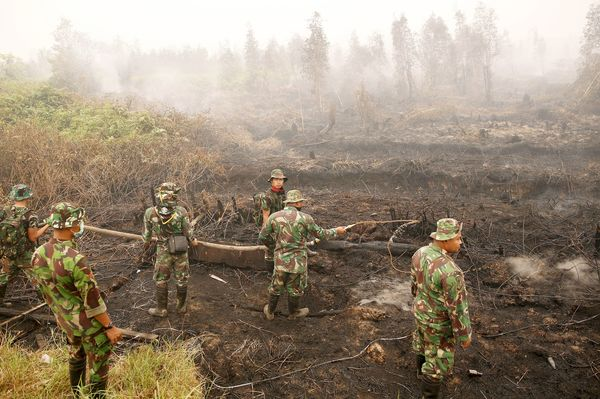 indonesian fire crisis