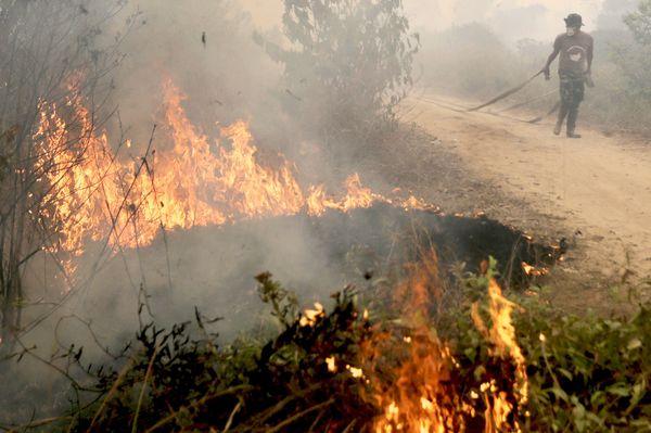 fire indonesia haze