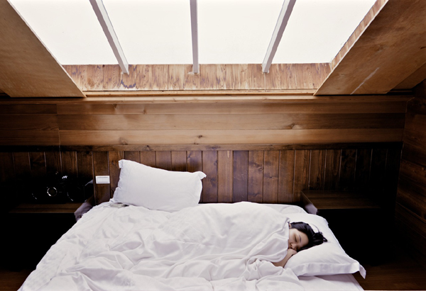 Polyphasic Sleep Leonardo da Vinci